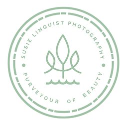 Susie Linquist Photography